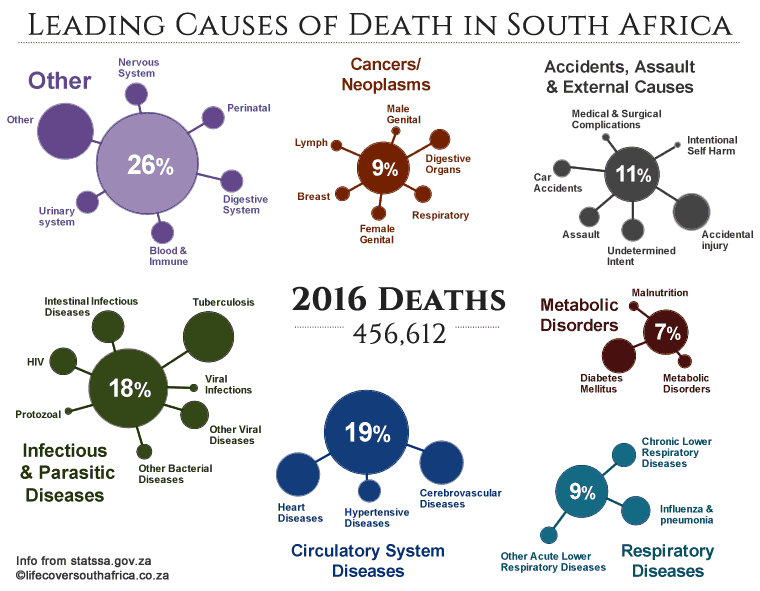 causes of death South Africa 2016